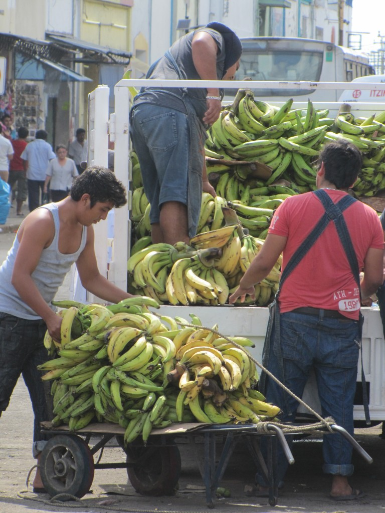 Bananas arriving