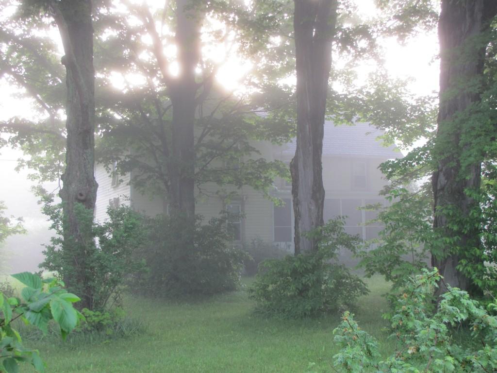 Foggy farmstead.
