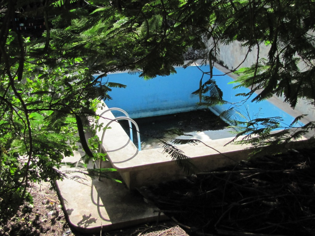 Mosquito orgy: abandoned pool in barrio Santiago